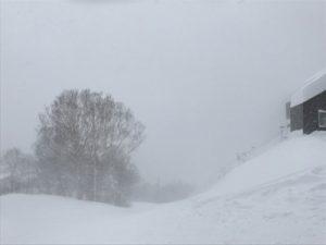 2017おおまち冬物語